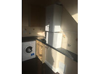 TWO BED FLAT IN GREEN LANE DSS WELCOME
