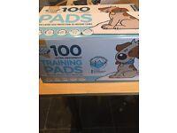 Good Boy Puppy Training Pads