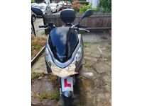 honda pcx 125cc great bike (alarm,heated hand grips,top box)