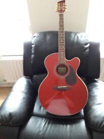 Brunswick acoustic electric guitar