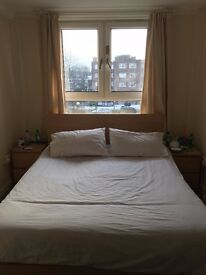 Bright double room in Central Brixton