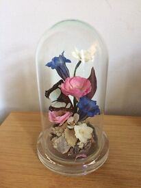 Vintage bell jar taxidermy butterfly and flower ornament / terrarium