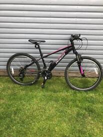 Speilized Hotrock Girls Mountain Bike
