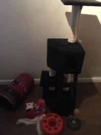 Cat scratching post and toys