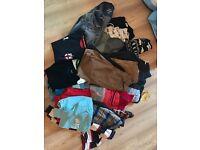 Bundle of boys clothes 10-12