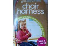 Gro anywhere Chair harness