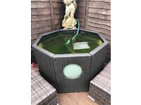 50 pence piece shape garden pond