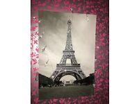 Eiffel Tower canvas