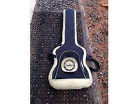 Indie bass guitar bag/case