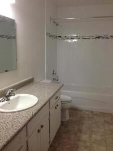 15 Greenwood Drive - Two Bedroom Apartment Apartment for Rent Stratford Kitchener Area image 5