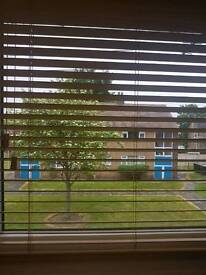 Brand New Wooden Blinds