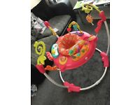 Pretty petals jumperoo immaculate condition