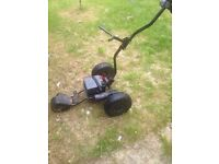Electric golf buggy for sale