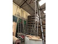 SELECTION OF SINGLE LADDERS