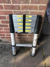 Draper Telescopic Ladder (nearly new)