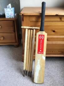 Junior cricket bat and stumps