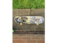 Sk210 skateboard