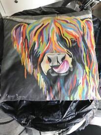 Steven brown cushions x2