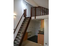**1 bed loft style apartment - Springbourne Area - Available 12/09/16 **