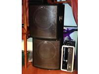 Peavey Bass Bins with Amp