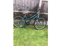 """EMMELLE NIGHTSHADE MOUNTAIN BIKE, 26"""" WHEELS, 16"""" FRAME, good condition, fully working £50"""