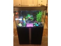Aquarium, Cabinet and everything needed to get started. £150.00