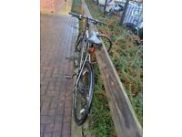 carrera gryphon(M size) Bicycle with accessories