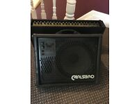 Carlsbro 150 w power module and 100w monitor