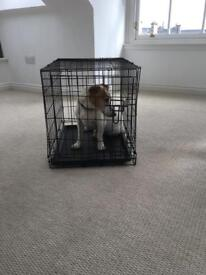 Dog cage (dog for display purposes only)