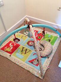 Baby Play Mat VGC