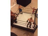 WWE Ring & Wrestling Figures.