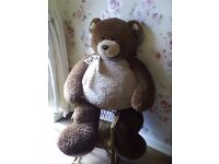 Lovely large collectable giant gund teddy bear