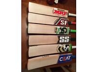 SS TON, MRF VK Kolhi, SF, SG, CA and CEAT Cricket Bats: All top of the range at end of season prices