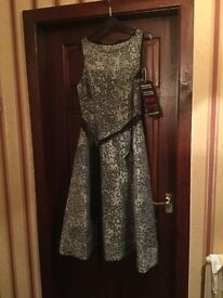 Black and ivory fit and flare Andrianna Papell dress size 16. New and unworn, labels still attached.
