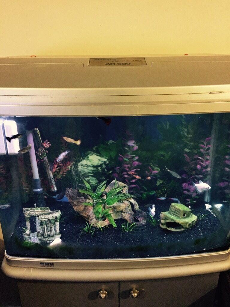 Aquarium fish tank northamptonshire - Image 1 Of 2