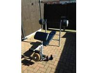 Pro fitness weights bench