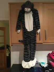 Mog costume 5-6 book day outfit