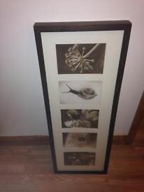 Lovely IKEA Framed Photo