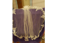 single tier lacey Bell veil with comb