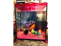 Fish Tank in immaculate condition - great for kids