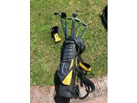 Golf bag/cubs
