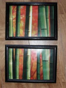 Bamboo Pictures