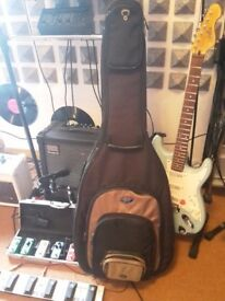 guitar case ,electric & acoustic