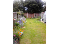 2bed house Norwich seeks 2 bed bungalow