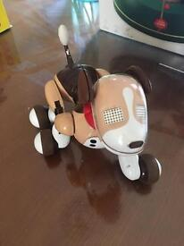 Bentley the spin master robot dog made by Zoomer