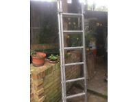 2 Piece Step Ladder