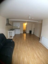 Large One Bed Ground Floor Flat - TORQUAY