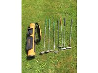 Junior golf clubs and bag (used)