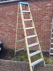 GLOW SUPERGLAS INSULATED LADDERS STEP LADDER
