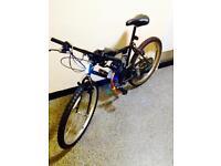 Pedal bike 50CC